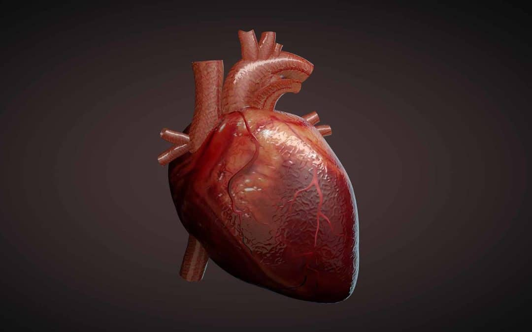 Saving Hearts. Saving Lives. What is a Soterogram?