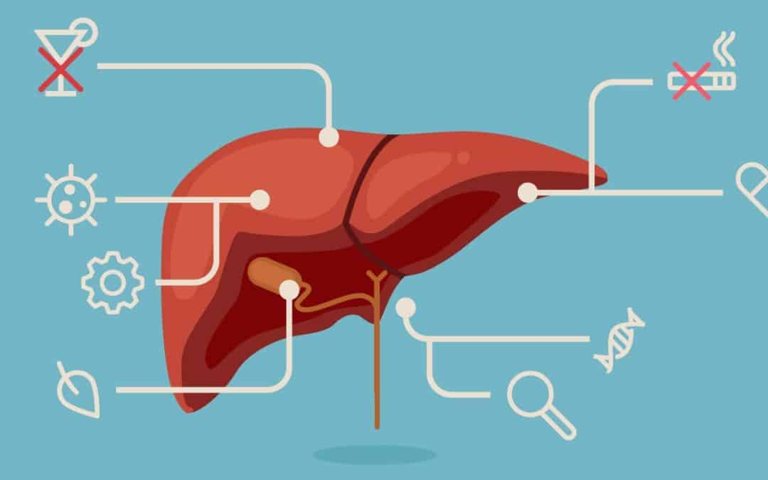 Things that are toxic to the liver