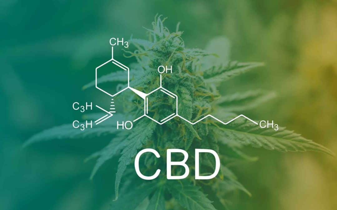 The Entourage Effect of CBD and Terpenes